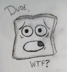 Surprised Toast!!|by novastar