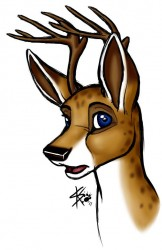 Doe Eyed Stag|by sketchkat