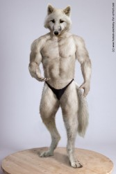 Werewolf Bodybuilder|by Pythos