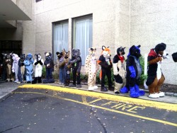 Furfright 2012 G|by Lupine Assassin