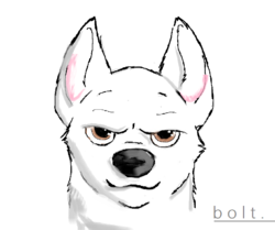 Bolt - intent gaze|by CarlMZ