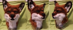 Fox head(For sale)|by Artslave
