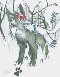 My Poke-sona, Barghoa, the Mightyena/Houndoom Hybrid|by houndeana12