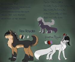 Demi and Rex 2013 reference sheet|by Demifluffyfox