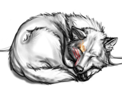 Nap Time|by Anakuro