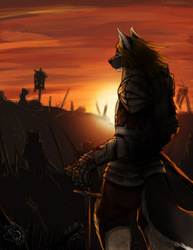 [CM-Nox Salune] Lone Warrior|by Ceowolf