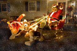 Santa Bear's Ride|by Belic Bear