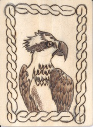 Osprey Badge|by Necryn