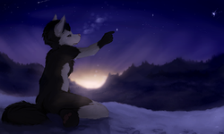 Touch a Star|by Black_Fury