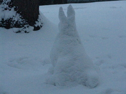 Snow rabbit|by Shunke