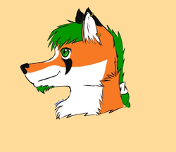 Sujidu Headshot|by _ZenFox_