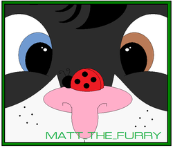 Face Icon comission|by Matthew_Hindpaw