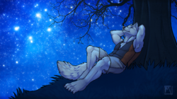 Stargazing|by tsaiwolf