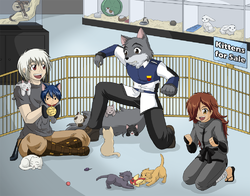 MMMMM2 - Round 3 - A Cat for Hayden|by Kurapika