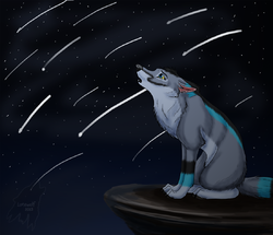 Meteor Shower|by Lonewolf Artz