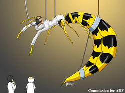 COM : Wasp Woman TF|by WhiteGuardian