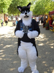 Husky Fursuiter at the Ren Fair!|by Of The Wilds