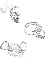 Rat Skull Sketch 1|by RockyMecha