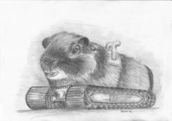 All Terrain Guinea Pig|by Aquilion