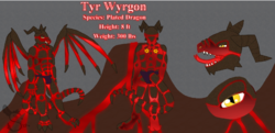 Tyr Wyrgon Reference Sheet (commissioned work, clean)|by Tyr Wyrgon