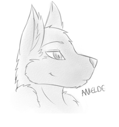 Headshot!|by Anielde