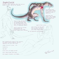Zophiloid Species Study 1 (Now in New Male-Herm Group - may delete and reupload soon tho)|by Zoophs