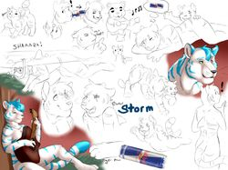 Sketch page|by Storm_Tiger