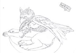 My very first Gryphon|by ~Naraku~