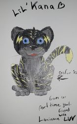 Lil'Kana Sketchbook Art CesFur 2013|by Kana
