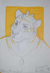 Rotarr Sketchbook Art CesFur 2013|by Kana