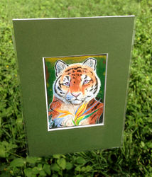Tiger ACEO|by Tassy