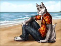 Beach Wolf - Commission for GoGoWolf|by dream_and_nightmare