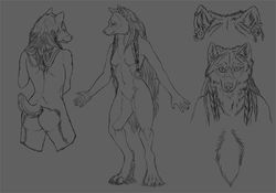 Naira Refsheet version 1|by tidmatiger