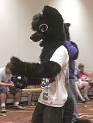 Indyfurcon 2013   Fursuit Games 37|by SMWolf