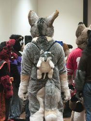 Indyfurcon 2013   Fursuit Games 41|by SMWolf