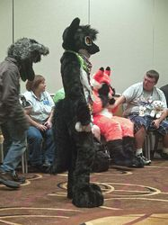 Indyfurcon 2013   Fursuit Games 43|by SMWolf