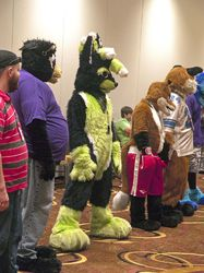 Indyfurcon 2013   Fursuit Games 8|by SMWolf