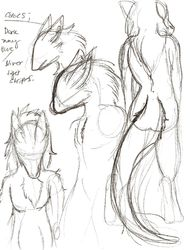 Some sergal practice|by weird dragon