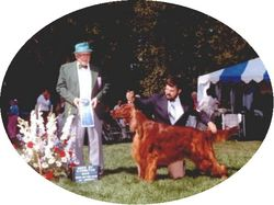 My Big Red Dogs #1 AKC & SKC Ch. Pella's Fire From Heaven CD, JH, VC, CGC|by firefromheaven