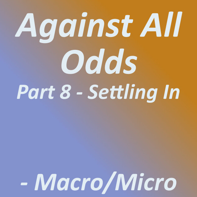 Against All Odds: Part 8 - Settling In|by Tirrell
