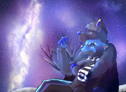 starry nights|by firekeeper77