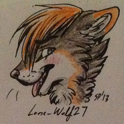 Headshot by SierraFox|by Lone_Wolf27