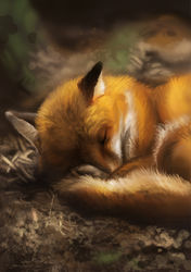 Sleepy Fox|by GaiasAngel