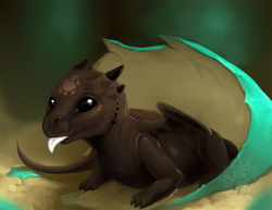 Chocolate Hatchling|by MissOro