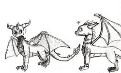 Spyro and Cynder Sketch|by DeckofFool