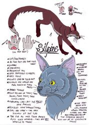 Silpine Species Info Overload|by Zombi_Rat