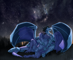 [Commish by Treats]..Beneath a starry sky..|by Malk