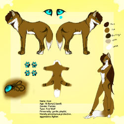 Ref Sheet Kxei|by ValenKyra