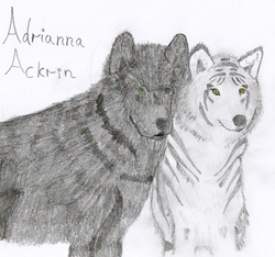 Two Wolves, done by Tristan Iseme|by Mistress Adrianna