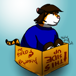 Kittybox|by Mike Folf